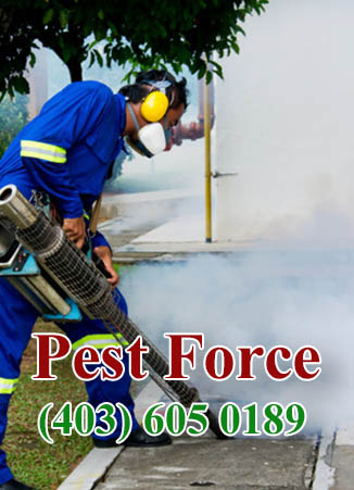 commerce__pest_solutions